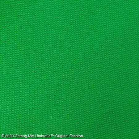 ร่มชายหาด สีเขียว